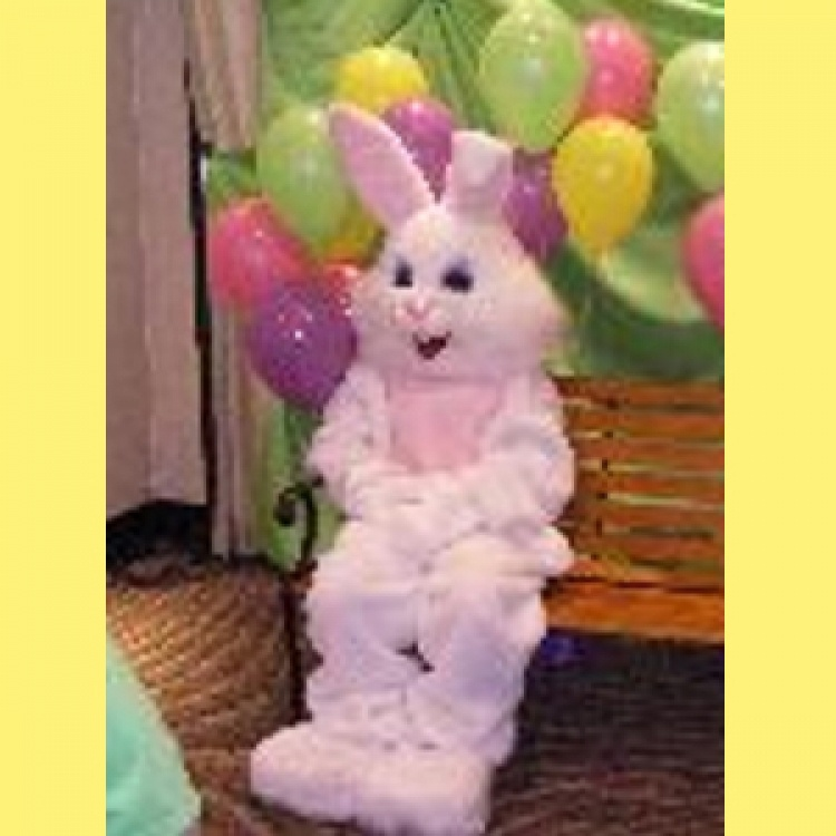 Easter Bunny Costume only